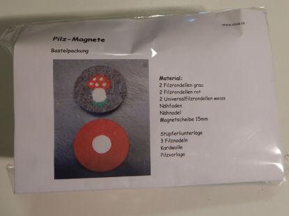 Bild von Bastelpackung Pilz-Magnete